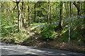 SK3382 : Footpaths off Hutcliffe Wood Road, Sheffield by Ian S