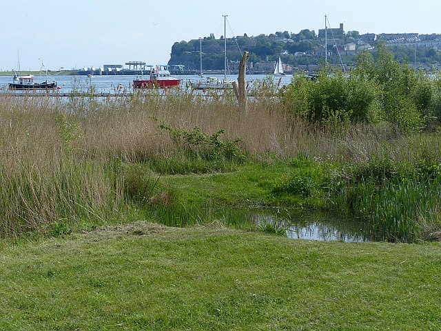 View towards Penarth Head from Cardiff Bay Wetlands Reserve