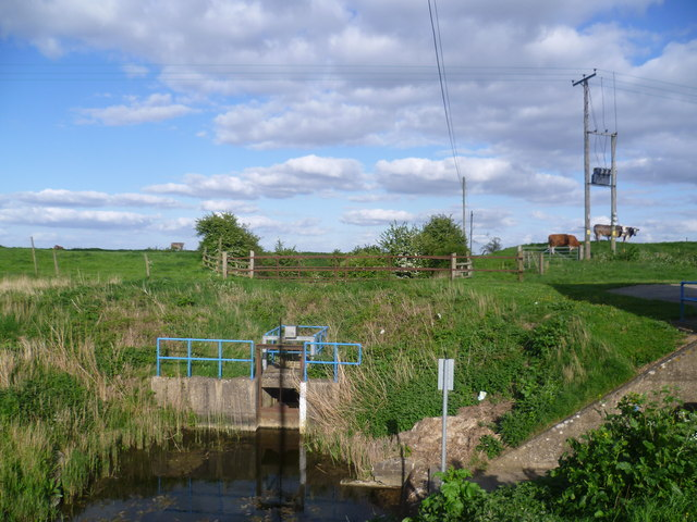 Lifting water up to the South Forty Foot Drain from Rippingale Fen