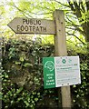 SX6960 : Paws on Dartmoor by Derek Harper
