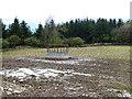 NT4929 : Feeder in field near Shawmount by Oliver Dixon