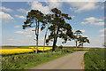 TF1371 : Grange Farm by Richard Croft