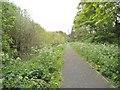SO9495 : Railway Footpath by Gordon Griffiths