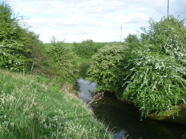 Inlet off the South Forty Foot Drain