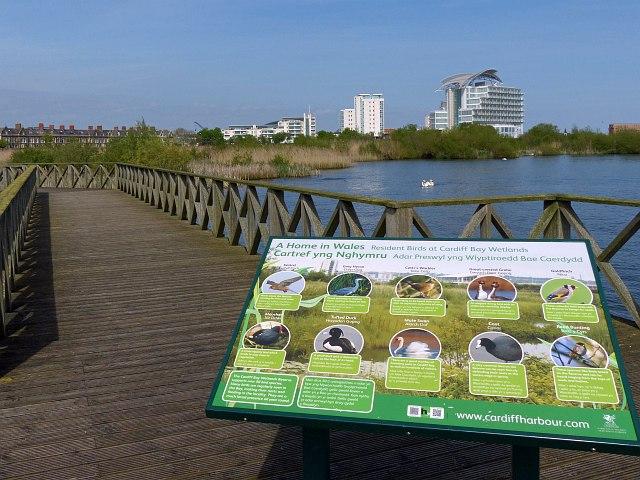 Information board, Cardiff Bay Wetlands Reserve
