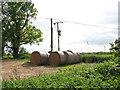 TG3212 : Electricity transformer by Dye's Farm by Evelyn Simak