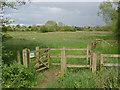 SU9951 : Parsonage Meadow by Alan Hunt