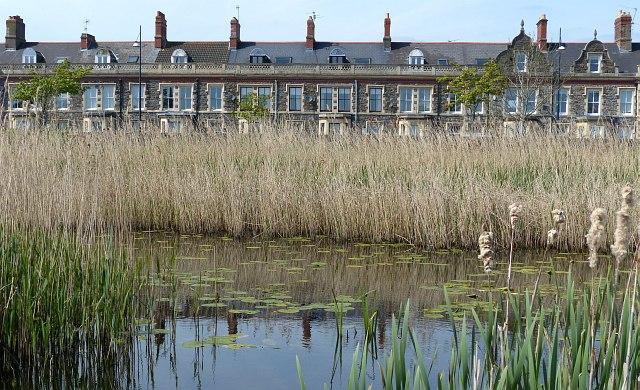 Windsor Esplanade and Cardiff Bay Wetlands Reserve