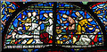 TR1557 : Stained glass window s.VII, Canterbury Cathedral by Julian P Guffogg