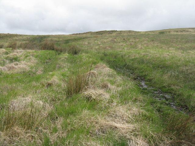Marshy moorland in Glen Lussa