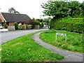 SJ5069 : Gongar Lane, Ashton Hayes by Alex McGregor
