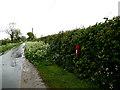 TM4494 : Waterheath Road & Waterheath Road George V Postbox by Adrian Cable