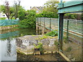 TF1609 : Low Locks on the River Welland, Deeping St. James by Paul Bryan