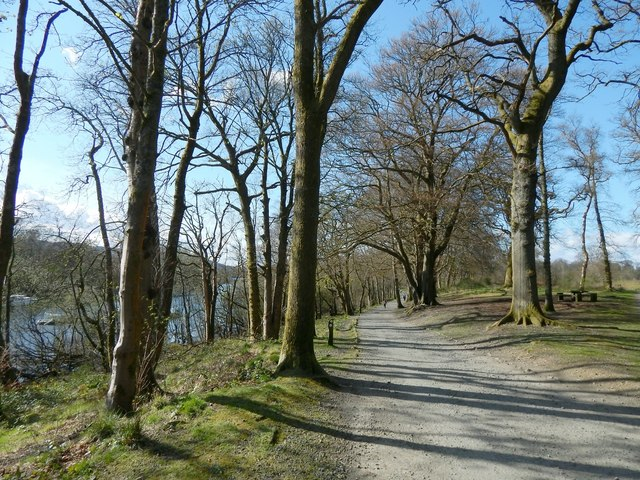 Path in Balloch Castle Country Park