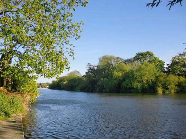 The Thames at Lower Halliford
