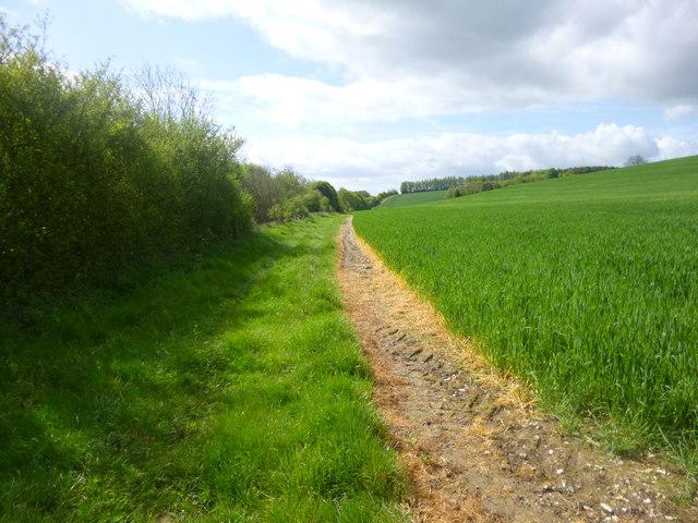 Burghclere, permissive bridleway
