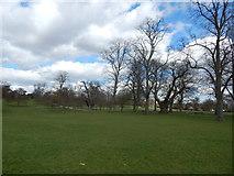TM1645 : Christchurch Park by Hamish Griffin