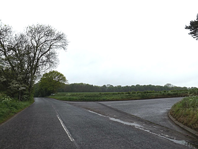 Beccles Lane, Waterloo