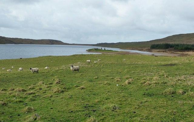 Finlaggan in Loch Finlaggan