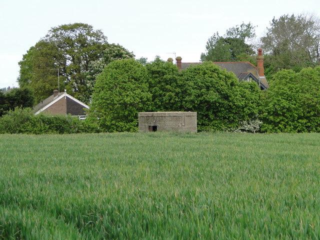 WW1 Pillbox in a cornfield at Kessingland