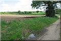 TF9931 : Fields by Barney by Evelyn Simak