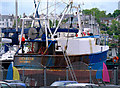 J5082 : The 'Shemarah' at Bangor by Rossographer