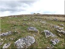 SX7375 : A hut circle at Tunhill Rocks by David Smith