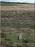 SX7375 : Standing stone on Blackslade Down by David Smith