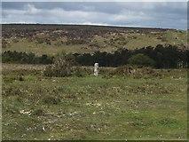 SX7374 : Boundary stone near Dry Bridge by David Smith