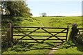 TF1696 : Thoresway pasture by Richard Croft