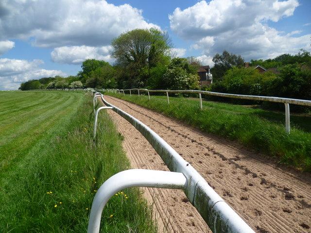 Horse ride on Epsom Downs