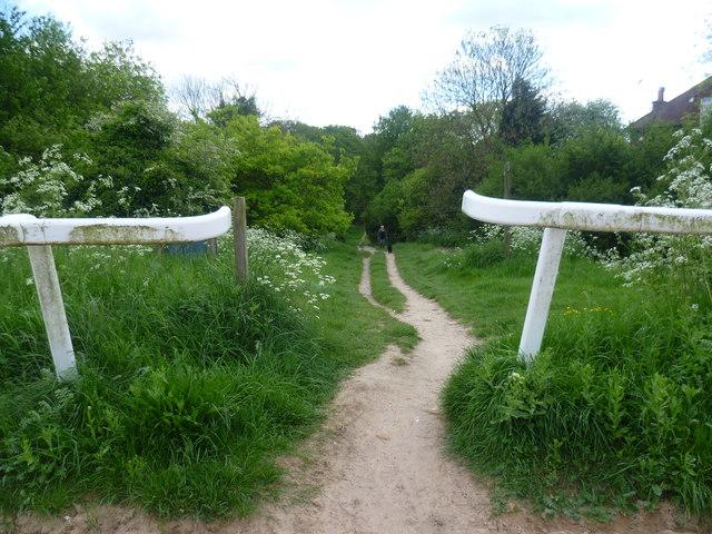 Path to Walton Downs