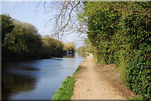 TQ1281 : Grand Union Canal and Walk by N Chadwick