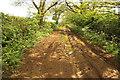 SK8433 : Sewstern Lane by Richard Croft