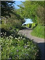 SX3472 : Lane near Downend by Derek Harper