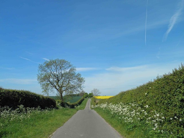Early summer on the Lincolnshire Wolds
