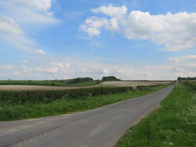 Road  to  Kiplingcotes