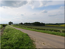 SE9546 : Minor  road  from  Holme  on  the  Wolds by Martin Dawes