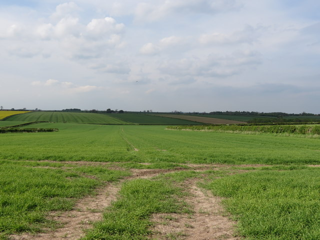 Arable  fields  northwest  of  Holme  on  the  Wolds