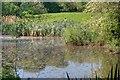 NZ5114 : Lake in the Fairy Dell by Mick Garratt
