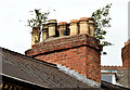 J3372 : Chimney and chimney pots, Stranmillis, Belfast (May 2014) by Albert Bridge