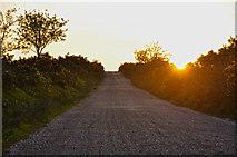 SS8429 : North Devon  : Exmoor - Ridge Road by Lewis Clarke