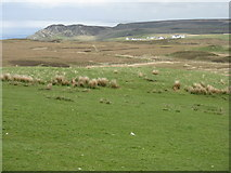 NR2743 : Lower Killeyan and the Islay coast by M J Richardson