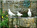 SP0933 : Green man and white doves, Snowshill Manor, Gloucestershire by Brian Robert Marshall
