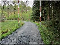 NS5379 : West Highland Way approaching B821 by Chris Heaton