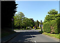 TM4489 : Rectory Lane, Worlingham by Adrian Cable