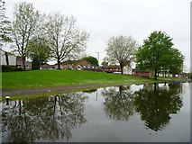 SJ8599 : Flooded canal bank, Rochdale Canal, Miles Platting by Christine Johnstone