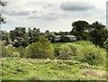 SJ7582 : Tatton Park Cattle Pens by David Dixon