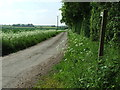 TM3387 : Farm Track And Footpath by Keith Evans