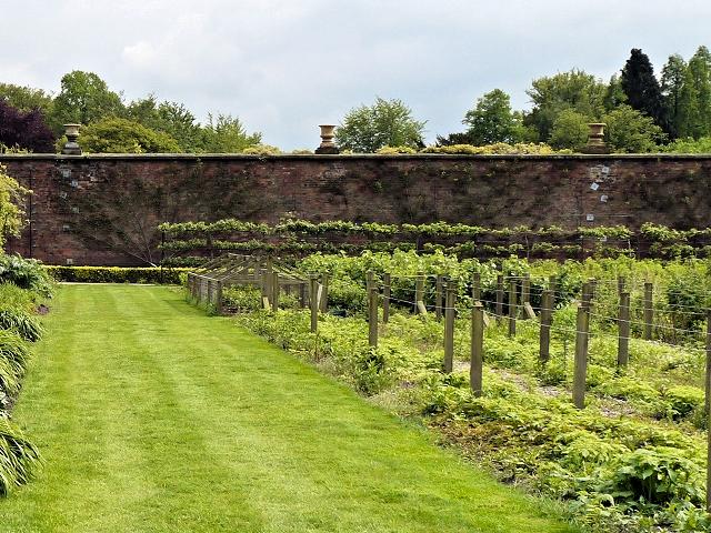 Walled Garden, Tatton Park